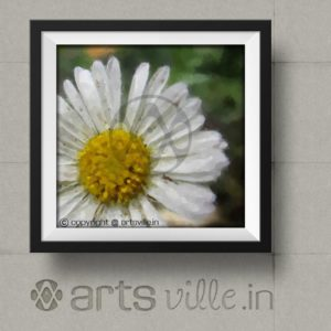 Online-paintings-india-artsville-white-daisy-flower-P028PS