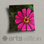 Online-paintings-Print-on-Canvas-Pink-Flower-Art-P039PCS